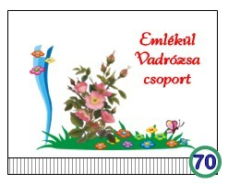 Óvodai ballagó tarisznya  70-es minta (vadrózsa)